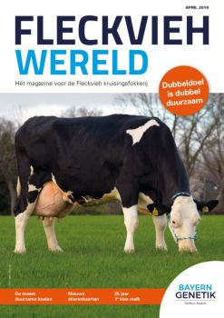 Fleckvieh Wereld April 2019