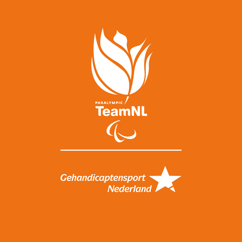 Team NL Logo