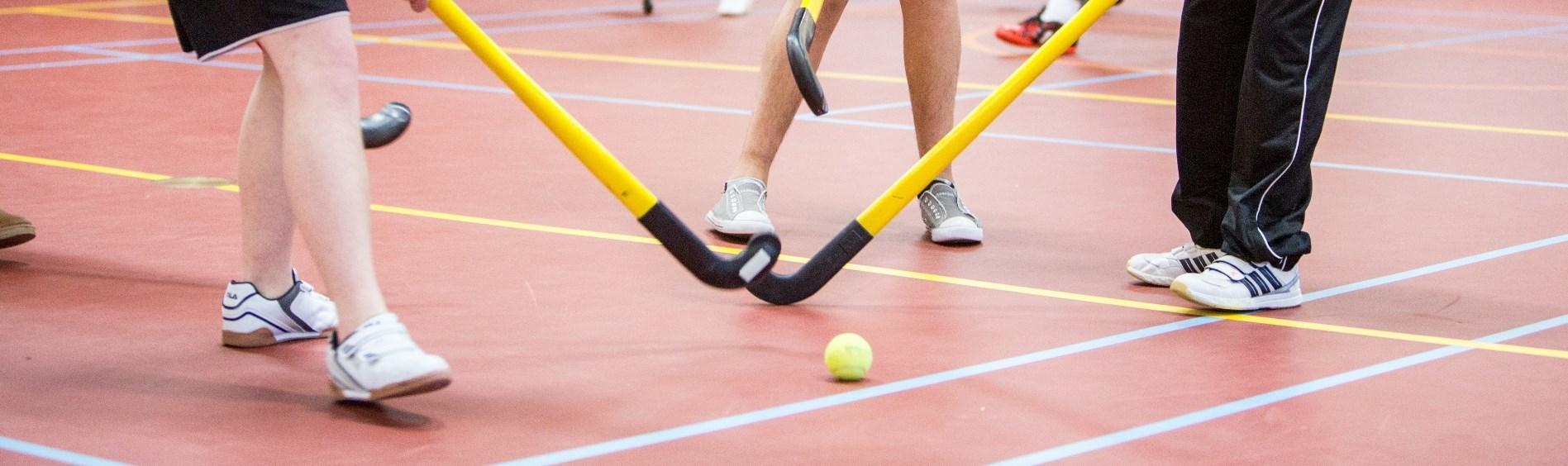 Gehandicaptensport Nederland Grensoverschrijdend Gedrag