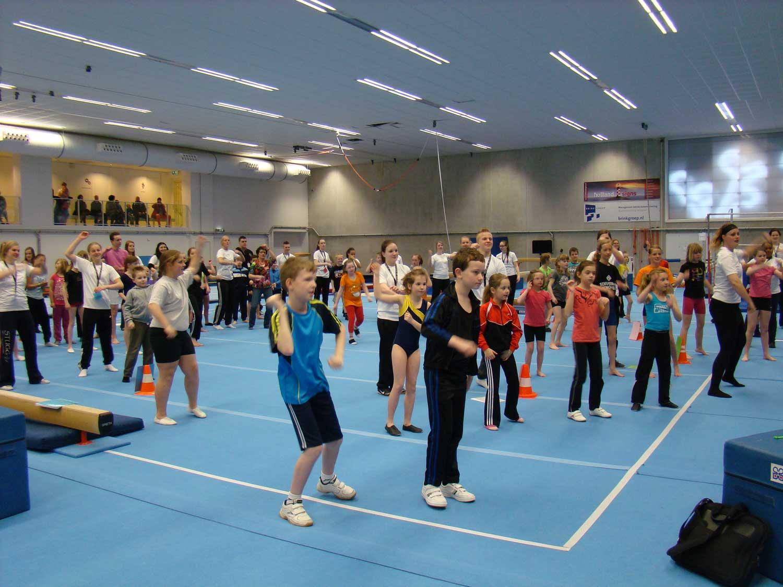 Nederlandse Gymnastiek Unie aangepaste sporten
