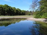 Gemeente Arnhem en IPC Groene Ruimte; door met biodiversiteit afbeelding nieuwsbericht