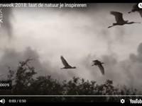 Natuurboeken bij IPC afbeelding nieuwsbericht