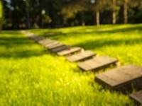 Vakman Begraafplaatsen vs. Beheerder Begraafplaatsen afbeelding nieuwsbericht
