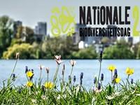 Rapportcijfer van de Nationale Biodiversiteitsdag afbeelding nieuwsbericht