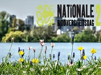 Nationale Biodiversiteitsdag 22 mei a.s. afbeelding nieuwsbericht