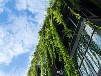 Groen sectoraal, natuur is integraal afbeelding nieuwsbericht