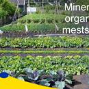 Organische of minerale meststoffen