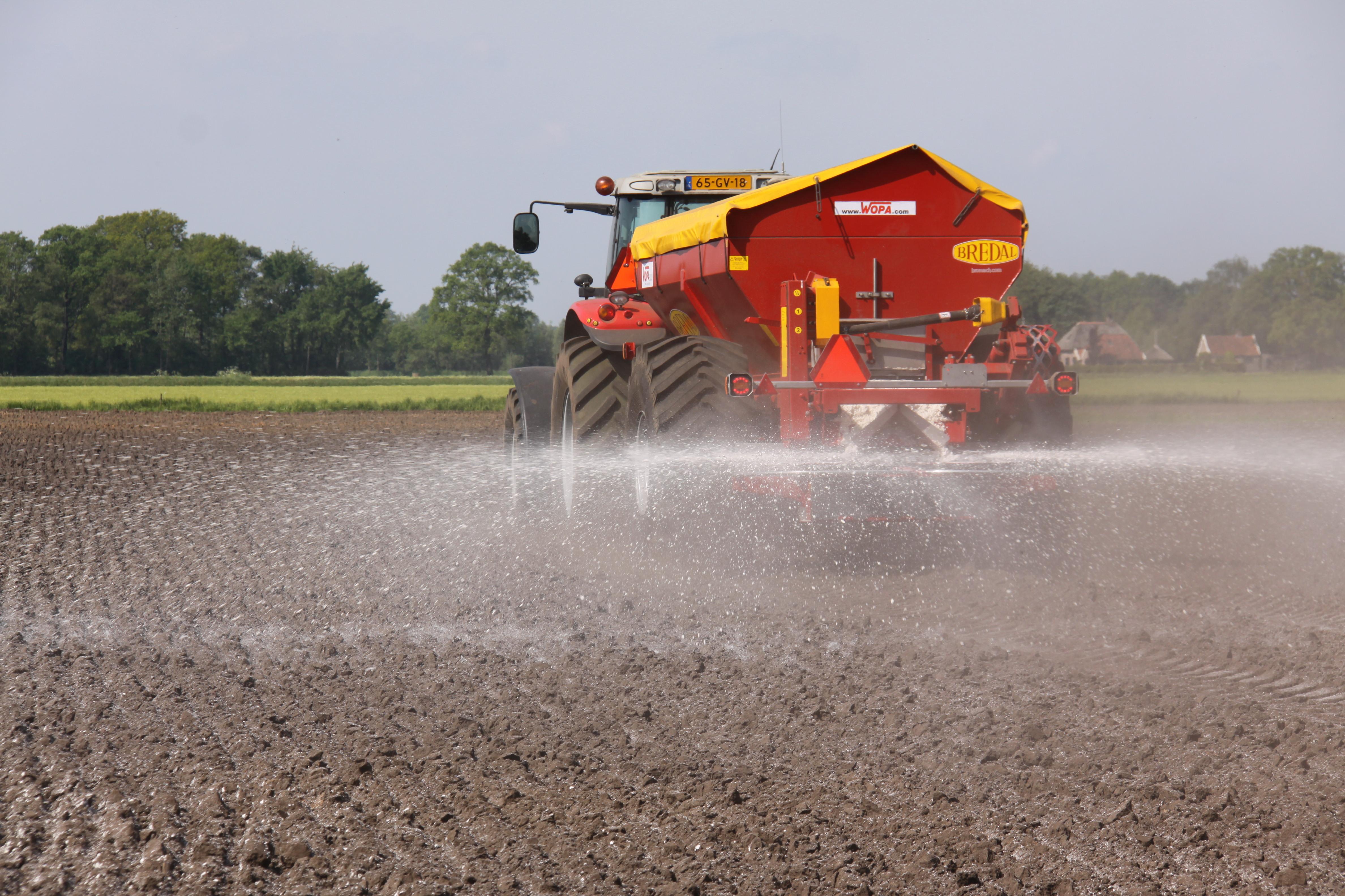 Bekalken van maisland op zandgrond