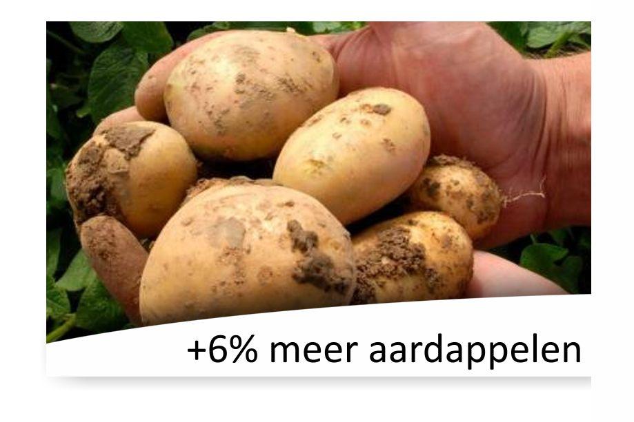 Piadin in de aardappelteelt